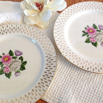 """Floral Dinner Plate, Lifetime China Co.""""Imperial"""" Semi Vitreous"""