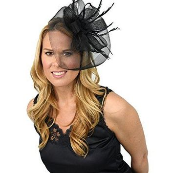 HomeX  Womenrsquos Fascinator Hat Black Veil with Rosette and Feathers