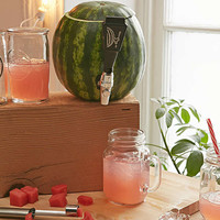 Watermelon Keg Tapping Kit | Urban Outfitters