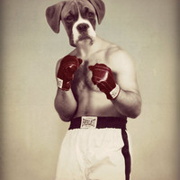 "Boxer Art Print, Boxing Dog, ""The Champ"" 8 x 10, Mixed Media Collage, Watchful Crow Arts"