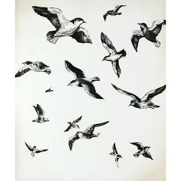 For the Birds Giclee Print by Sydney Edmunds at Art.com