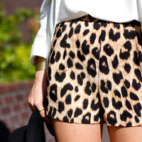 Perfect Shorts in Leopard from ShopWunderlust