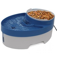 Cat Feeding Bowl Water Fountain