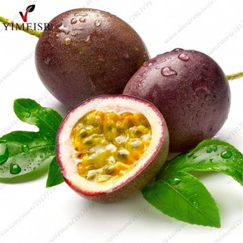 Purple Passion Fruit(Passiflora edulis)Seeds,Rare tropical edible fruit seeds Organic fruit tree seeds for indoor plant10pcs/bag