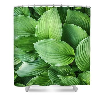 Beautiful Green Arc-shaped Leaves Shower Curtain