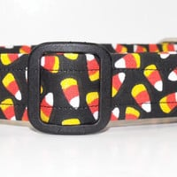 Halloween Candy Corn Dog Collar
