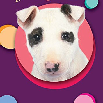 Seek Publishing Pet Kardlet, Bull Terrier (PKBULT)