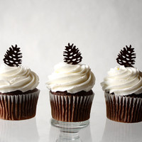 12 Pinecone Cupcake Toppers (Acrylic)