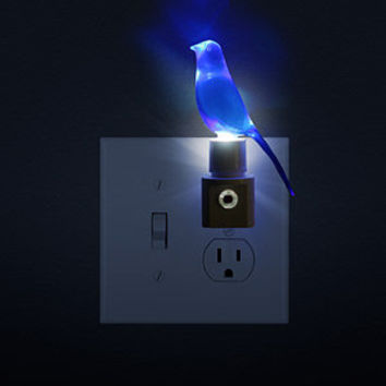 Blue Canary in the Outlet by the Light Switch