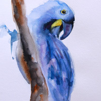 Blue Parrot, Original Watercolor Painting, Tropical Bird, Bird Painting Art,  Watercolour Art