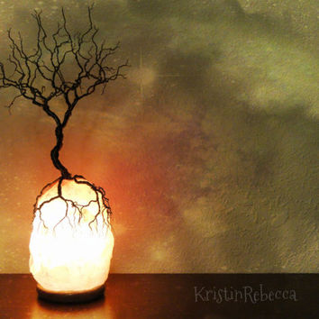 Himalayan Salt Lamps Evil : Best Tree Of Life Lamp Products on Wanelo