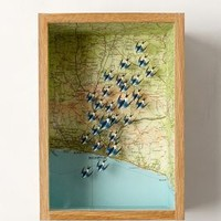 High Over Brighton Shadow Box by Anthropologie Assorted One Size Decor