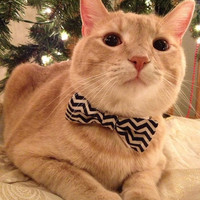 Bow Tie Cat Collar // Various Prints { 26 Color Options } | Chariots Afire |