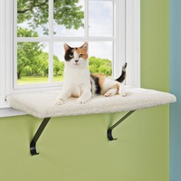 You & Me Scout & Snooze Window Cat Perch | Petco Store