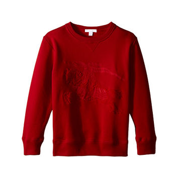 Burberry Kids Luxury Embroidered Sweater (Little Kids/Big Kids)