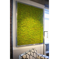 Giant Moss Plaque Wall Art