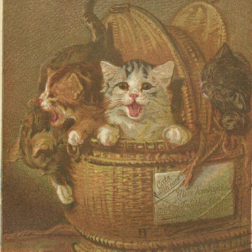 A Basket of Kittens Original Color Print Litho Bookplate from 1882 Chatterbox Children's Book - Just Arrived