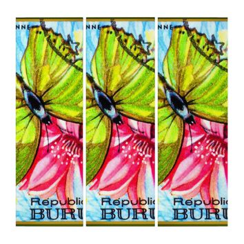 Butterfly Charaxes Eupale Triptych