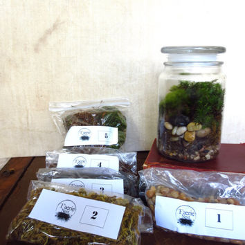 Large Moss Terrarium Kit with Jar DIY Terrarium Layers with Jar Moss Terrarium Kit Apothecary Jar Terrarium,  Live Moss Terrarium Layers