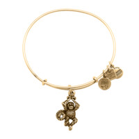 Monkey Charm Bracelet - Alex and Ani