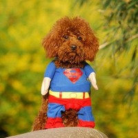 Dogloveit Dog Halloween Costumes Superhero Costume Superman - Size: XL