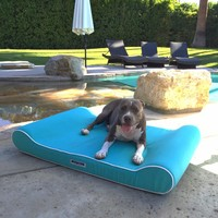 Animals Matter Too® Outdoor Ortho Contour Lounger with Waterproof Cover