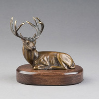 Noble Presence - Bronze Mule Deer