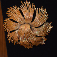 1950's Monet Gold Plated Abstract Brooch