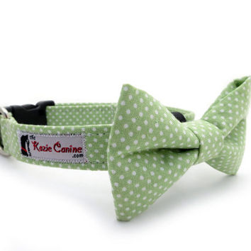 Polka Dot Dog Collar Green & White Matching Bow by theKozieCanine