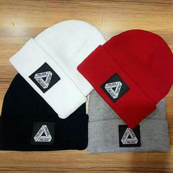 ONETOW Perfect Palace Hip Hop Women Men Beanies Winter Knit Hat Cap