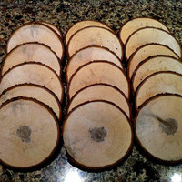 "3 1/4"" tree Hickory wood slices for rustic weddings log bridal favors coasters tree rounds"