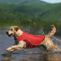 Kurgo Surf n' Turf Pet Life Jacket & Winter Dog Coat