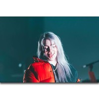 S792 Billie Eilish Pop Music Star Beauty Girl Wall Art Painting Print On Silk Canvas Poster Home Decoration