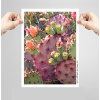 Purple Prickly Pear Cactus Photography/ OPEN EDITION prints / Cactus photography and cacti Photography /Purple ,pink, green