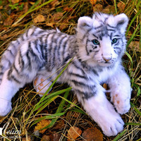 White tiger Alice - handmade stuffed realistic animal