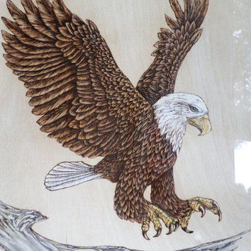Bald Eagle Woodburning Pyrography wall Decor picture art