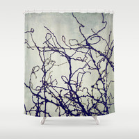 Confused Shower Curtain by Dena Brender Photography