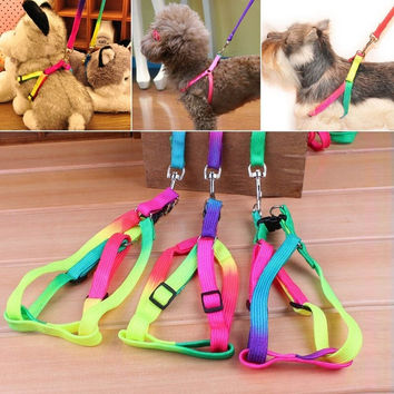Lovely Nylon Harness Collar Training Leash Lead Strap Adjustable for Pet Small Dog Puppy 1PC = 1652800388