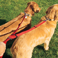 Dog Leads and Leashes: Coastal Pet Products Two Dog Nylon Walking System