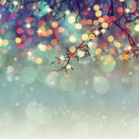 6774 Printed Mistletoe Bokeh Christmas Holiday Backdrop