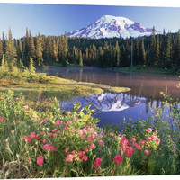 Mt Rainier and Wildflowers at Reflection Lake