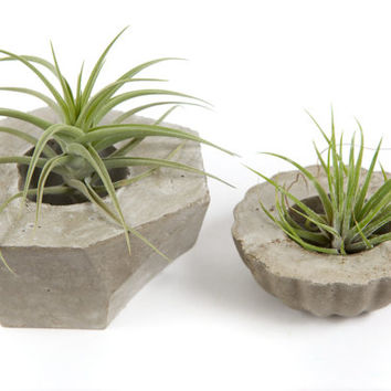 Geometric concrete planter; patio garden yard decor