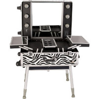 Large Professional Rolling Studio Make-Up Case with Lights