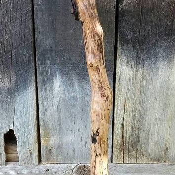 Birchwood Tree Walking Stick/Hand Carved Hiking Stick/Wizard Stick/Little Person Walking Stick/Child Size Staff