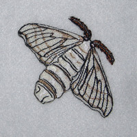 CUTE Silk Moth Bombyx mori Iron on Patch