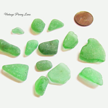 Lot of Sea Glass, Beach Glass, Frosted Green