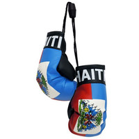 Mini boxing Gloves - Haiti