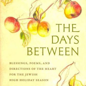The Days Between (HEBREW): Blessings, Poems, and Directions of the Heart for the Jewish High Holiday Season (Hbi Series on Jewish Women)