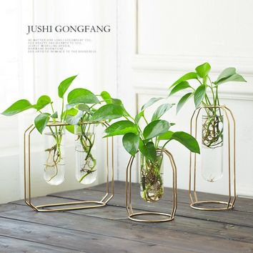 Metal Shelf Glass Vase Hydroponic Glass Pots Flower Vase Decorative Pots Planters Tube Vase
