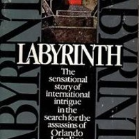 Labyrinth : Pursuit by Eugene Propper and Taylor Branch (1983, Paperback) - RARE